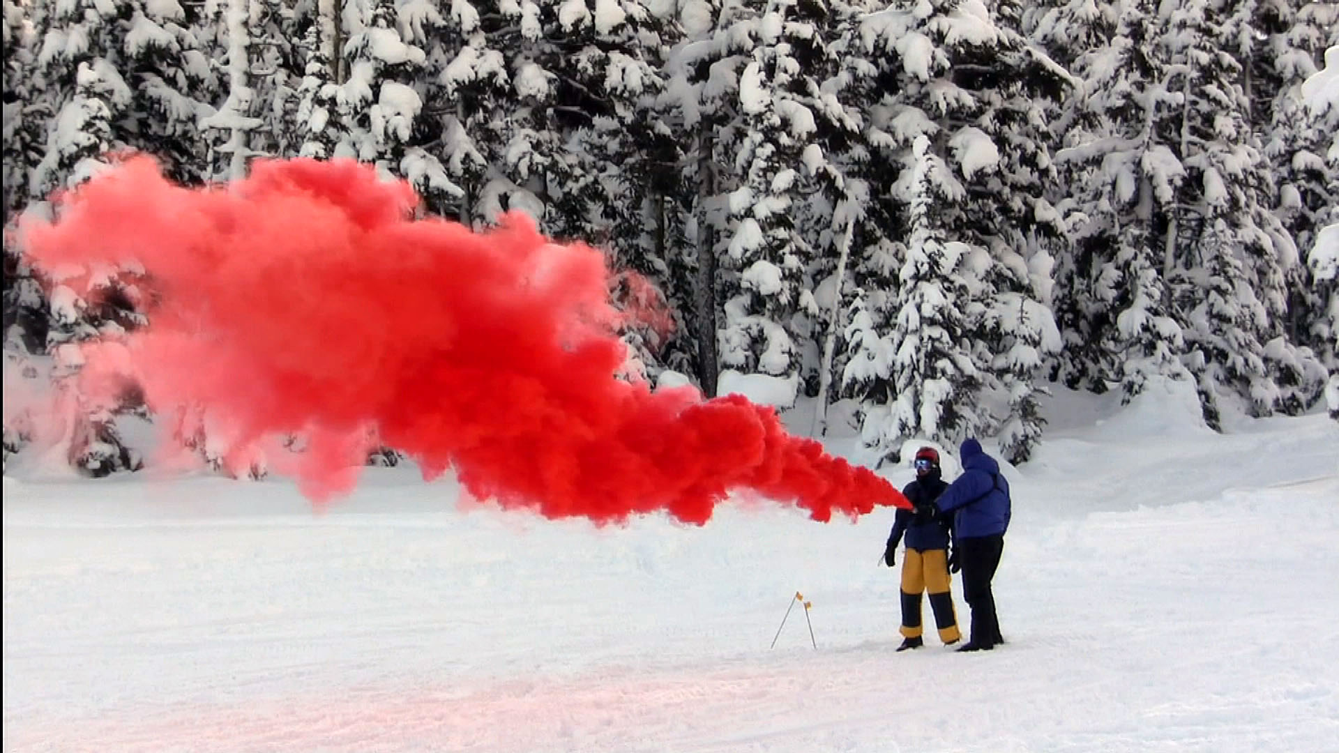 Watch me oil up and flex jockmenlive
