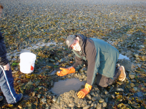 Marine Toxins Finding New Habitats As Oceans Warm