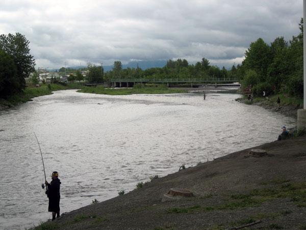 Ship creek closed to king fishing alaska public media for Anchorage alaska fishing