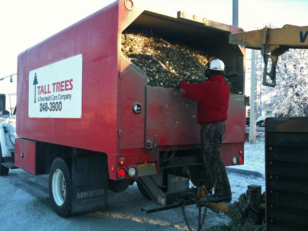 Post-Holiday Recycling Opportunities Abound In Anchorage