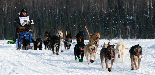 Ramey Smyth leaves Willow at the beginning of the 2013 Iditarod. Photo by Rhonda Edge.