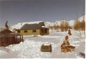 Jeanne Follette Dog Sled