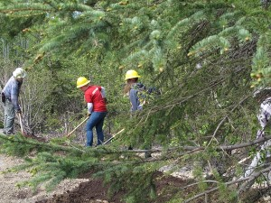 Chugach National Forest Summer Jobs 1