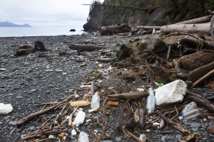 Marine debris in Bulldog Cove on the western shore of Resurrection Bay in 2011. Photo credit: Kip Evans/courtesy of Anchorage Museum