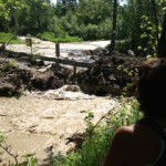 Rabbit creek flood_DE