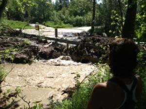 Rabbit creek flood_DE