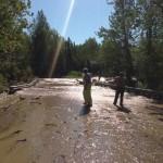 rabbit creek flood_APD