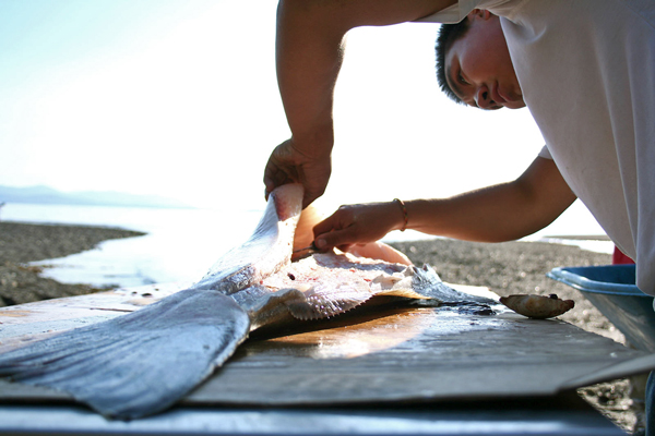 Shawaan Jackson-Gamble cleans a halibut for the Kake culture camp. Photo by Erik Neumann, KCAW - Sitka.