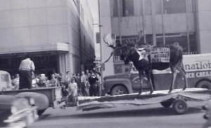 Statehood Moose, June 30, 1958.  Jana Ariane Nelson