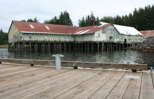 In June the Keku cannery  was listed as one of America's 11 most endangered historic landmarks by the National Trust for Historic Preservation. Photo by Erik Neumann, KCAW – Sitka.