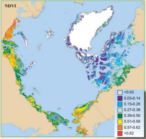 Sea Ice Changes Begin Affecting Vegetation On Land