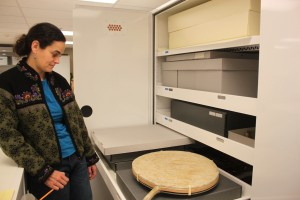 Alaska State Museum conservator Ellen Carrlee wants to ensure a walrus stomach drum from the 1974 Arctic Games remains unharmed during the move to the new building. Photo by Lisa Phu, KTOO - Juneau.