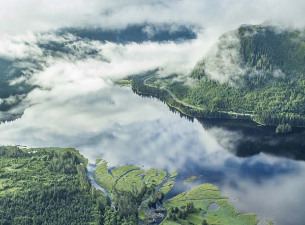 Aerial view of an estuary on Prince of Wales Island in the Tongass National Forest of Southeast Alaska. Photo credit: © Erika Nortemann/TNC