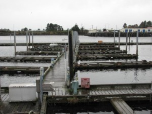 Slip holders at ANB harbor have all been relocated to other spots around Sitka as the city prepares to demolish it. Photo by Rachel Waldholz, KCAW - Sitka.