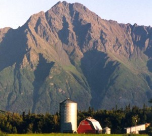 Palmer is home to much of Alaska's limited farmland.