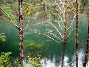 'Little' Redoubt Lake A Boon To Sockeye?