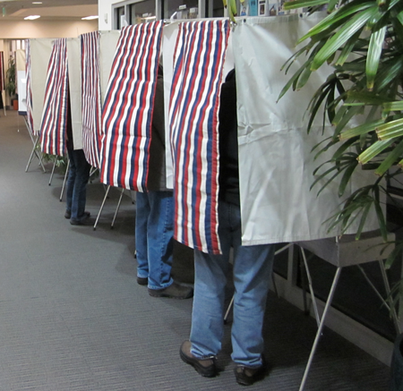 Voters stand inside voting booths with their legs showing.