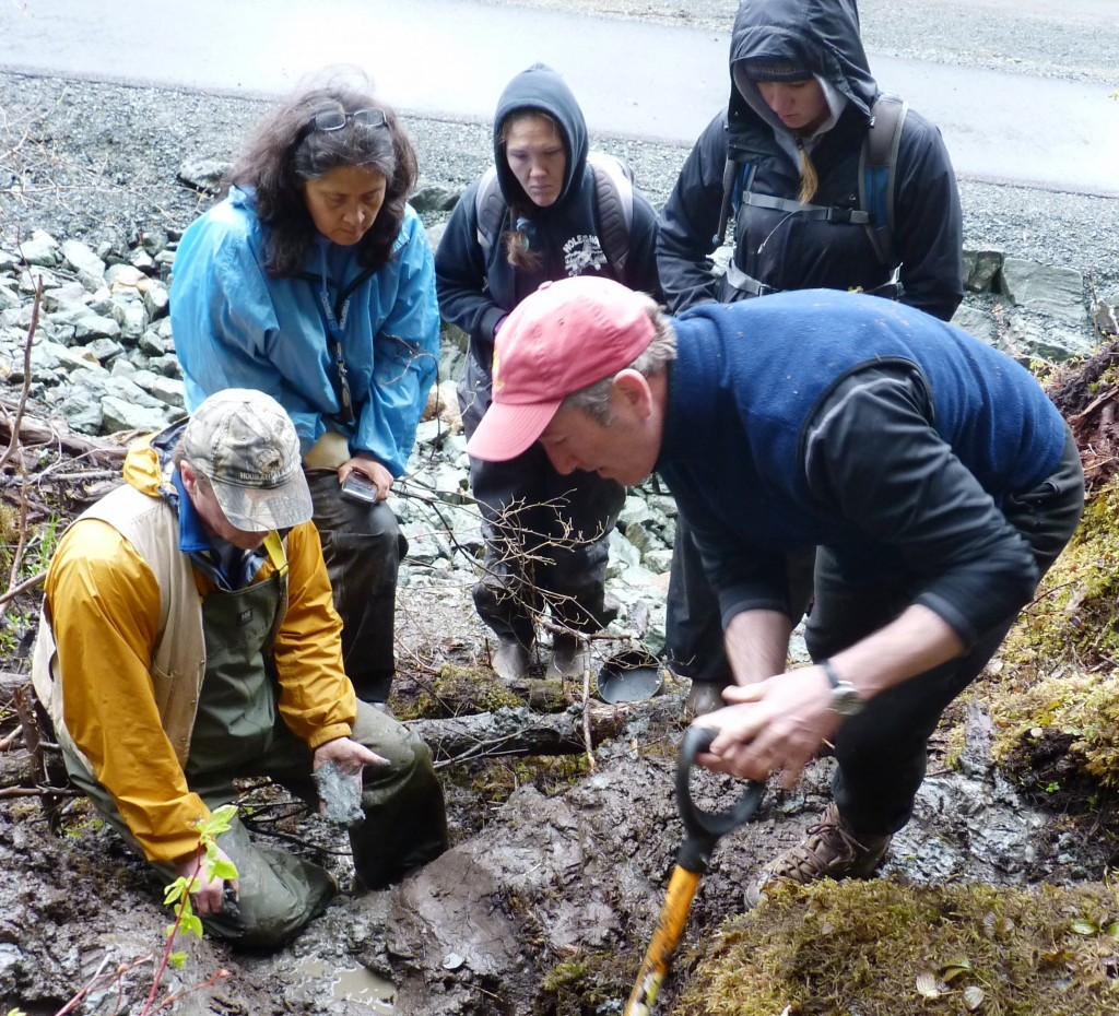 Soil scientist Dave DAmore (right) works with students and anthropology professor Dan Monteith (left) during a dig on the University of Alaska Southeast Juneau campus. Ed Schoenfeld, CoastAlaska.