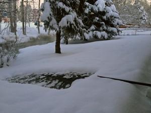Photo by Daysha Eaton, KSKA - Anchorage.
