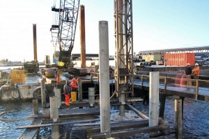 Contractors with Seattle-based Pacific Pile and Marine set a piling in ANB Habor in mid-December. Photo by Rachel Waldholz, KCAW - Sitka.