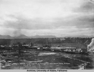 Anchorage 100 Years Ago, The Health Perspective