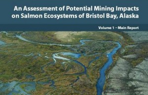 EPA Releases Watershed Assessment For Bristol Bay