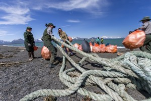 Art Enters the Dialogue about Marine Conservation