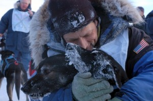 Former K300 champion Martin Buser celebrates with his dogs after his 2007 championship. Photo by Christ Pike.