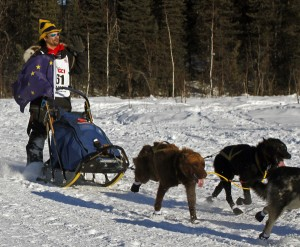 Hugh Neff leaves Willow during the 2014 Iditarod restart. Photo by Josh Edge, APRN - Anchorage.