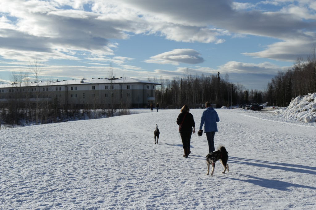 Dog walkers enjoy one of Anchorage's Dog Parks.