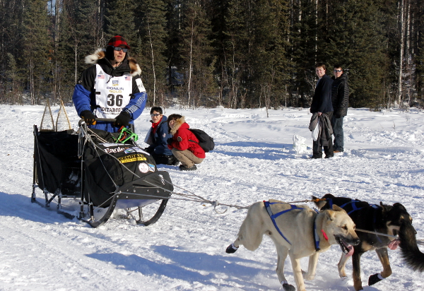 Martin Buser departs Willow at the 2014 Iditarod's official restart. Photo by Josh Edge, APRN - Anchorage.