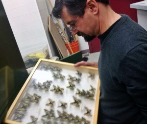 Derek Sikes shows off parts of one of the world's largets butterfly collections. (Photo by Emily Schwing, KUAC - Fairbanks)
