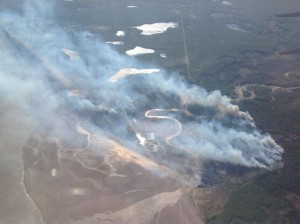 A photo of the Tyonek Fire taken on May 19 by the Alaska Division of Forestry.