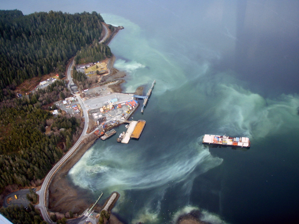 Aerial view of the Starrigavan boat launch, looking south. (ADF&G photo)