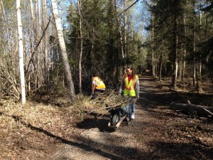 Volunteers haul and clip brush during the Davis Park Fix-It in Mt. View