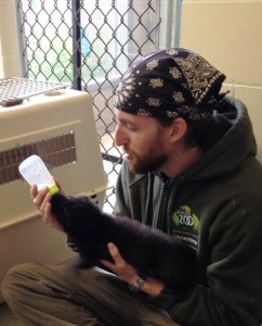 Zookeeper Zach Shoemaker feeds another orphaned pup.