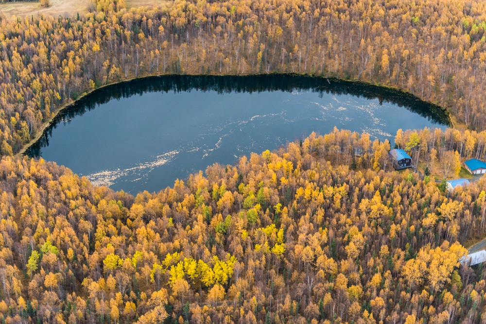 Dandy Lake from the air. Photo by Carl Johnson.