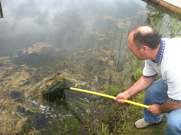 Tim Ridle scrapes Elodea out of Anchorage's Sand Lake (Photo by Joaquin Palomino)