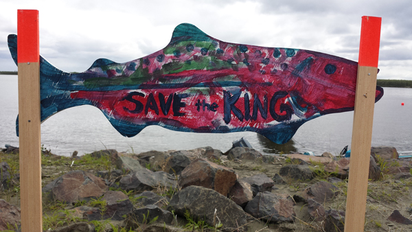 Salmon signs began appearing along Bethel roadsides in June. (Photo By Daysha Eaton, KYUK - Bethel)
