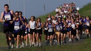 Mayor's Marathon and other marathons