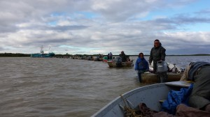 Kuskokwim Fishers: Stop Commercial Openings, Call in Feds