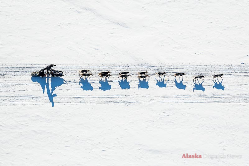 Dallas Seavey mushes on the Yukon River between Ruby and Galena on March 7, 2014. Seavey won his second Iditarod race a few days later.