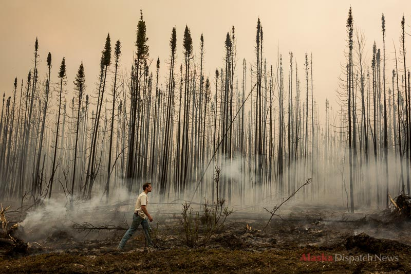 Sam Werner walks a fire line near Browns Lake, looking for hot spots, on Saturday, May 24, 2014. The Funny River fire had burned up to the line three hours before.