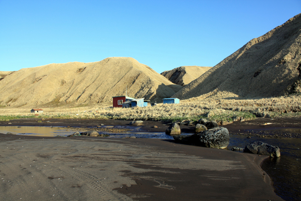 The campsite at Korovin Beach on Atka. (Lauren Rosenthal/KUCB)