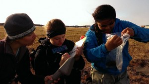 Young Barrow scientists study lemmings and endangered species. Photo courtesy of U.S. Fish and Wildlife Service.