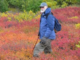 Frank Keim treks through fall foliage last month during the Northern Alaska Environmental Center's 18th annual Run for the Refuge. This year, Keim led the center's annual celebration of the Arctic National Wildlife Refuge. Credit Northern Alaska Environmental Center