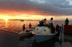 The fishing fleet in Kotzebue Sound. Photo: Jim Menard, Alaska Department of Fish & Game.