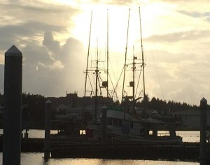 King Salmon Trolling Ends On Slow Note