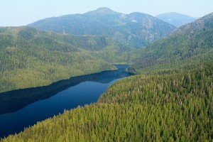 Aerial view of Tongass National Forest. (Creative Commons Photo by Alan Wu)
