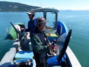 Voices of Glacier Bay: An Adventure in Sound